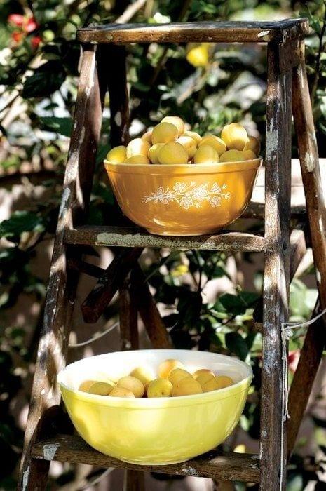sitruunan poimintaa