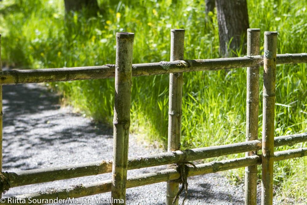 Roihuvuoren japanilaistyylinen puutarha-1